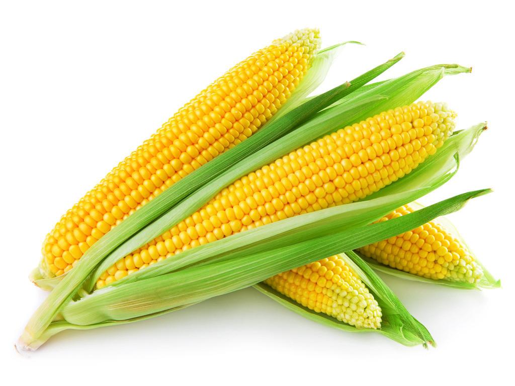 梦见吃老玉米豆